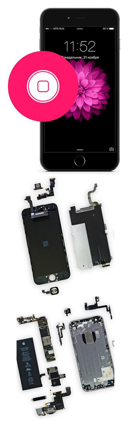 Замена кнопки Home на iPhone 6, 6 Plus в Екатеринбурге